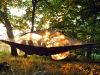 suspended-treehouse-tent-tentsile-alex-shirley-smith-6